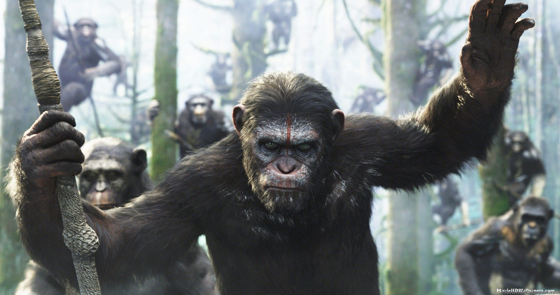 Dawn of the planet of the apes movie review bkonthescene dawn of the planet of the apes movie review publicscrutiny Gallery