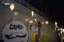 Capra019